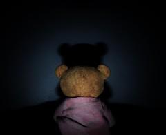 _DSC0051 (willdrewitsh) Tags: plush teddy bear stuffed toy william drewitsh boniface jouet nounours doudou peluche
