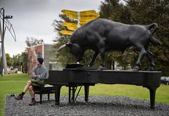 man and the chch bull (Virginia McMillan) Tags: christchurch newzealand buildings art architecture cities urban