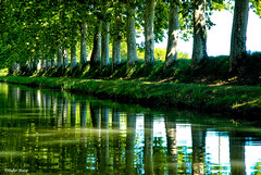 Canal du Midi (3) (didier95) Tags: canaldumidi beziers herault riviere canal arbre vert reflet
