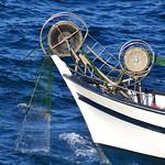 Remontée de pêche au filet thumbnail
