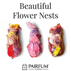 Bees Use Petals To Make Beautiful Flower Nests (PAIRFUM) Tags: artisan artisanperfumersoflondon authentic beautiful blogger boutique candle christmas diffuser gift giftideas holidaydecor indie interiordesign london londonfashion love natural niche organic original pairfum parfum peace perfume real shoppingonline unique vegan
