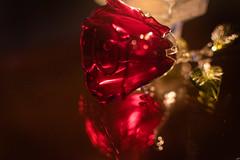 10012019-DSI_4655 (susocl1960) Tags: reflection cristal flor macrofotografia reflejo rosa vela
