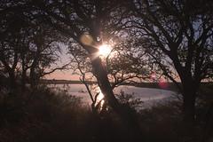 Atardecer en la Laguna 2 (Martin Antolin PH) Tags: paisaje landscape sunset sunrise atardecer contraste highcontrast altocontraste contraluz color sky pink orange