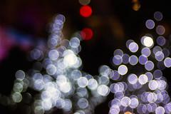 Bokeh (AlexSalvetore) Tags: bokeh beyondbokeh colour colours absract light new years christmas festive fairylights fairy fairys artifacts artefacts texture noisybokeh bokehporn bokehcity bokehphoto bokeholi bokehandblur