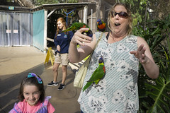 Dawn Of The Birds (evaxebra) Tags: long beach aquarium pacific aquariumofthepacific california dawn january 2019 luna mermaid ariel costume animal sea lorikeet bird birds green red yellow feed feeding
