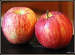 Pom, pom, pom ! (Les photos de LN) Tags: fruit pomme nature rouge