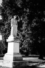 36408 - Statue (Diego Rosato) Tags: statue statua roma rome villa torlonia parco park italia italy nikon d700 50mm sigma rawtherapee bianconero blackwhite