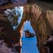 A Natural Bridge Reflected