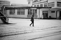 EUROMASTER (gato-gato-gato) Tags: 35mm contax contaxt2 iso400 ilford ls600 noritsu noritsuls600 schweiz strasse street streetphotographer streetphotography streettogs suisse svizzera switzerland t2 zueri zuerich zurigo analog analogphotography believeinfilm film filmisnotdead filmphotography flickr gatogatogato gatogatogatoch homedeveloped pointandshoot streetphoto streetpic tobiasgaulkech wwwgatogatogatoch zürich ch black white schwarz weiss bw blanco negro monochrom monochrome blanc noir strase onthestreets mensch person human pedestrian fussgänger fusgänger passant sviss zwitserland isviçre zurich