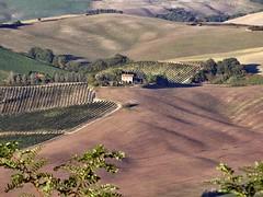 Val d'Orcia (Jolivillage) Tags: jolivillage valdorcia toscane tuscany toscana montalcino italie italy italia europe europa paysage landscape paesaggio picturesque geotagged