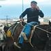 Donkey driver in Santorini