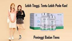 Alamat Lengkap Agen Obat Peninggi Badan Tiens Di Lombok (agenresmitiens) Tags: agen peninggi badan di lombok tiens alamat distributor penjual stokis obat tempat jual toko susu