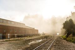 PR in Fog (88 of 102).jpg (Globalbirder) Tags: sfbay california bayarea landscape pointrichmond ferrypoint travel cityscape fog weather usa globalbirder