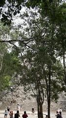 2017-12-07_12-28-09_ILCE-6500_DSC03039 (Miguel Discart (Photos Vrac)) Tags: 2017 49mm archaeological archaeologicalsite archeologiquemaya coba e1670mmf4zaoss focallength49mm focallengthin35mmformat49mm holiday ilce6500 iso100 maya mexico mexique sony sonyilce6500 sonyilce6500e1670mmf4zaoss travel vacances voyage yucatecmayaarchaeologicalsite yucateque