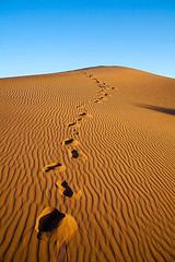 Sand dunes at Sahara desert (barts.world) Tags: sahara desert sand dune white sky footsteps tranquil sunrise