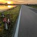 Biking along paddy fields in Pavia