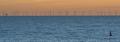 Windmill Farm Off Of Brighton And Hove (grahambrown1965) Tags: windmill windmills farm farms windmillfarm windmillfarms sea seafront water buoy buoys brighton hove brightonandhove dusk sussex eastsussex pentax k5iis pentaxk5iis 60250mm pentaxart justpentax smcpentaxda60250mmf4edifsdm smcpda60250mmf4edif