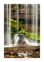 Behind The Veil - Russell Falls Tasmania (Dominic Scott Photography) Tags: tasmania australia waterfall waterfalls russellfalls longexposure leefilters leeirnd littlestopper dominicscott ilce7rm2 a7rmii sel2470gm gmaster