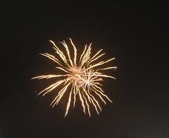 IMG_2395 (lesleydoubleday) Tags: meltonmowbray meltonboroughscenes fireworks twinlakes