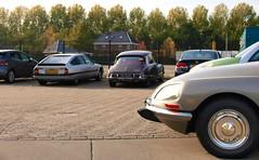 Citroën-Forum Najaarsmeeting - Heusden (Skylark92) Tags: nederland netherlands holland brabant noordbrabant heusden heesbeen citroënforum najaarsmeeting road tree windshield wheel car citroën cx 25 gti 26ttkg 1990 ds 23 pallas 96yb82 1973 al6315