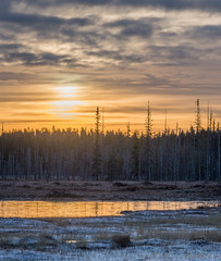 Golden ice at the golden hour in the middle of nowhere. (teetaira) Tags: forest sunset tree sky backlit ice swamp winter cloud isosuo finland suo vastavalo auringonlasku metsä lampi pond talvi