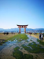Torii (bruno carreras) Tags: japon japan nippon isla island miyajima isukushima pagoda templo temple torii senjokaku hatsukaichi miyajimacho ciervo deer shika sol sun sunsen aterdecer puerto budismo budist