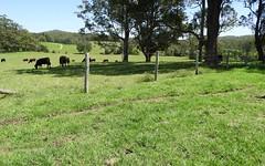 114 WEST FRAZERS CREEK ROAD, Beechwood NSW