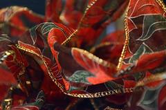 Macro Mondays: Holiday Bokeh – Festive (tao-of-m) Tags: macromondays holidaybokeh holidays winter festive bow ribbon present pointsetta christmas red decor