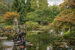 Benmore Fountain (Click And Pray) Tags: managedbyclickandpraysflickrmanagr reflection pond water argyll horizontal scotland rain fountain benmore autumn reflectionpondwaterargyllhorizontalscotlandrainfountainbenmoreautumngbr