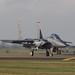 EGUL - McDonnell Douglas F-15E Strike Eagle - United States Air Force - 91-0310 / LN