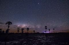 Camba Trapo nocturna (Sergio Ali - Naturaleza en imágenes) Tags: camba trapo esterosdelibera fotografíanocturna largaexposicion