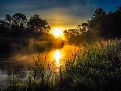 Sunbeam Drzewiczka (Andrzej Kocot) Tags: sunrise sunrisemood andrzejkocot river fog sunbeam landscapes landscape