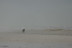 balade sur la plage (mimu_13) Tags: bretagne europe finistere france treogat mer paysage plage samsungnx nx500