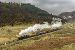 NELPG Charter (4486Merlin) Tags: 65894 countryside england europe exlner heritagerailways landscape nerclassj27 northeast northyorkshire northyorkshiremoorsrailway railways steam transport unitedkingdom woodland northdale gbr nelpg nelpgcharter grass locomotive smoke track trees