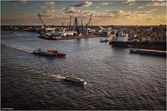Hamburger Hafen (geka_photo) Tags: gekaphoto hamburg deutschland elbe hafen schiffe kräne