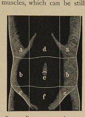This image is taken from Medical diagnosis : a manual of clinical methods (Medical Heritage Library, Inc.) Tags: diagnosis usnationallibraryofmedicine medicineintheamericas medicalheritagelibrary americana date1898 id9708567nlmnihgov
