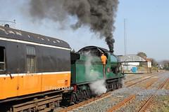 R.P.S.I. 461 in Gorey. (Fred Dean Jnr) Tags: march2012 wexford dublinwicklowwexfordrailway iarnrodeireann irishrail sparelinkrailtour rpsi cravencoaches cravens railpreservationsocietyofireland gorey goreystationwexford 461 steamlocomotive 3185