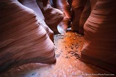 Flash Flood Scare (David Swindler (ActionPhotoTours.com)) Tags: southwest utah backcountry canyon desert mud sandstone slotcanyon