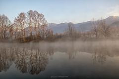 river landscape (fabrizio daminelli ) Tags: italy fabriziodaminelli canon lombardy lombardia wildlife natura nature landscape paesaggio sole sun fog nebbia river fiume adda