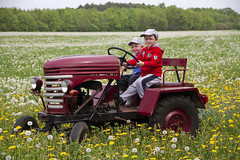 peb1_038971 (becker.raddusch) Tags: eigenbau kaev2014 traktor wiese calau brandenburg d