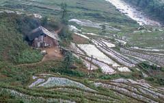 Ta Van (petiron) Tags: tavan vietnam 2014 tảván hàgiang vn