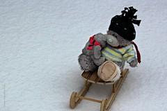 DON'T BE AFRAID  ||  IK HOU JE VAST (Anne-Miek Bibbe) Tags: snow sneeuw winter canoneos700d canoneosrebelt5idslr annemiekbibbe bibbe nederland 2019 wit white blanc weiss bianco blanco branco tuin garden jardin giardino jardim speelgoed toy spielzeug giocattoli juguetes bringuedos jouets bear teddybear beertje teddybeer beer speelgoedbeer nounours minibeer minibear januari || januar enero gennaio january janeirode