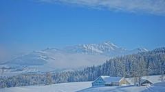Appenzellerland (HeiAld) Tags: urnäsch appenzell alpstein säntis switzerland swiss schweiz suisse heini alder ilce7 sony winterwonderland snow