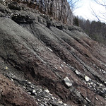 Paleosol (Cave Branch Member, Slade Formation, Upper Mississippian; Clack Mountain Road Outcrop, south of Morehead, Kentucky, USA) 35 thumbnail
