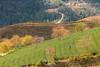 _Y2U3420.1218.Ô Qúy Hồ.Bản Khoang.Sapa.Lào Cai (hoanglongphoto) Tags: asia asian vietnam northvietnam northwestvietnam landscape scenery vietnamlandscape vietnamscenery vietnamscene sapalandscape nature afternoon sunny sunlight hillside flanksmountain trees teahill canon canoneos1dx canonef70200mmf28lisiiusm tâybắc làocai sapa bảnkhoang ôquýhồ phongcảnh phongcảnhsapa buổichiều nắng nắngchiều nắngsiên đồichè sườnđồi sườnnúi cây maianhđào sunnyafternoon hdr