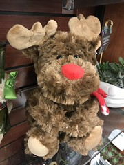 355/365/7 (f l a m i n g o) Tags: thursday 2018 13th december store christmas toy stuffed reindeer 365days project365 35436