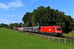 ÖBB 1116.141 Vogl (0952n) (christophschneider1) Tags: kbs950 vogl büvogl oberbayern öbb rca railcargoaustria siemens taurus 1116 1116141 gemischtergüterzug d850