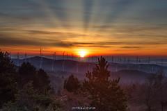 Amanecer en la sierra de Kodes (Navarra) (copelius38) Tags: amanecer sunrisers montaña mountain molinos viento landscape sun sol trees forest light