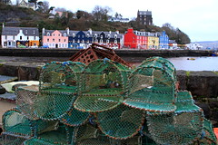 Tobermory - Isle of Mull (Ally.Kemp) Tags: tobermory harbour isle mull scotland houses colour