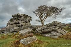 Emsworthy Rocks - Dartmoor (pm69photography.uk) Tags: emsworthyrocks emsworthy dartmoor devon southwest trees tree moody atmospheric atmosphere sonya7r3 sony sony24mm14gm granite
